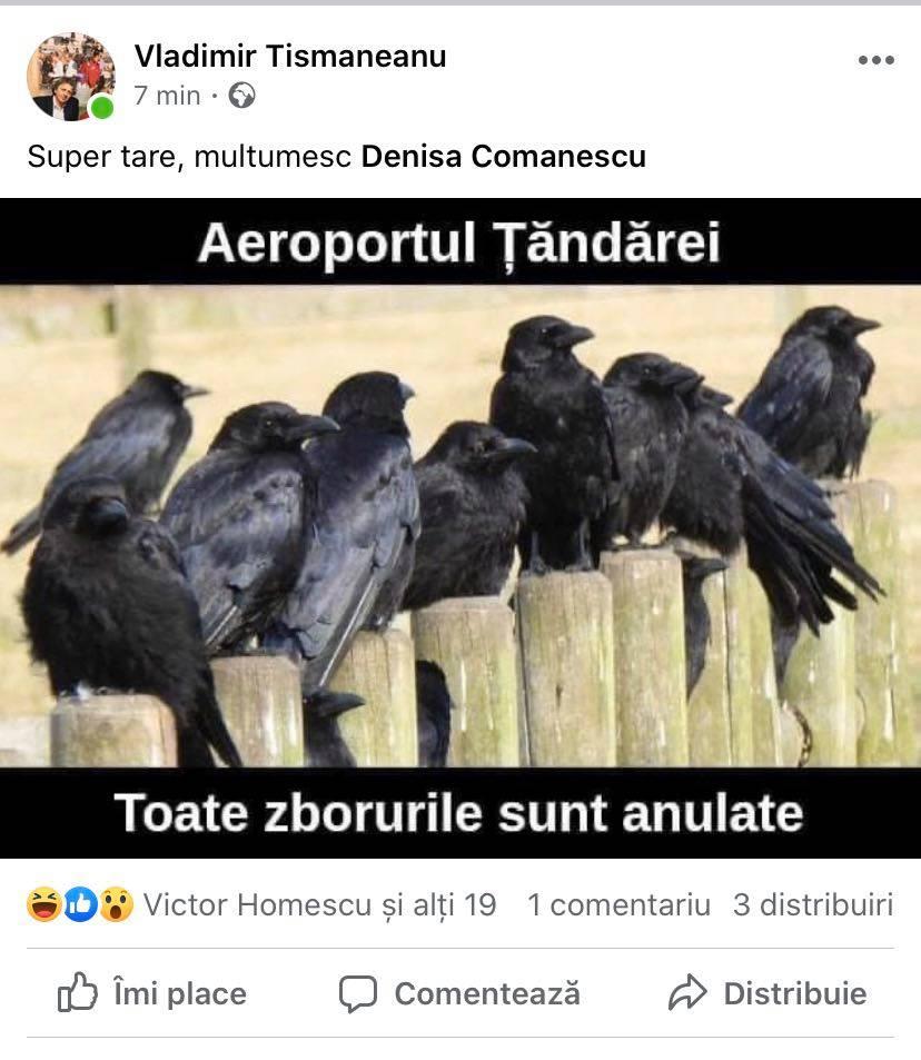 Postarea lui Tismăneanu